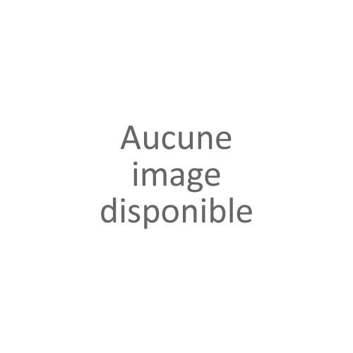 BOITE 6 MOUCHOIRS - GUASCH